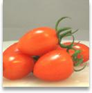 tomato25_shadow.jpg